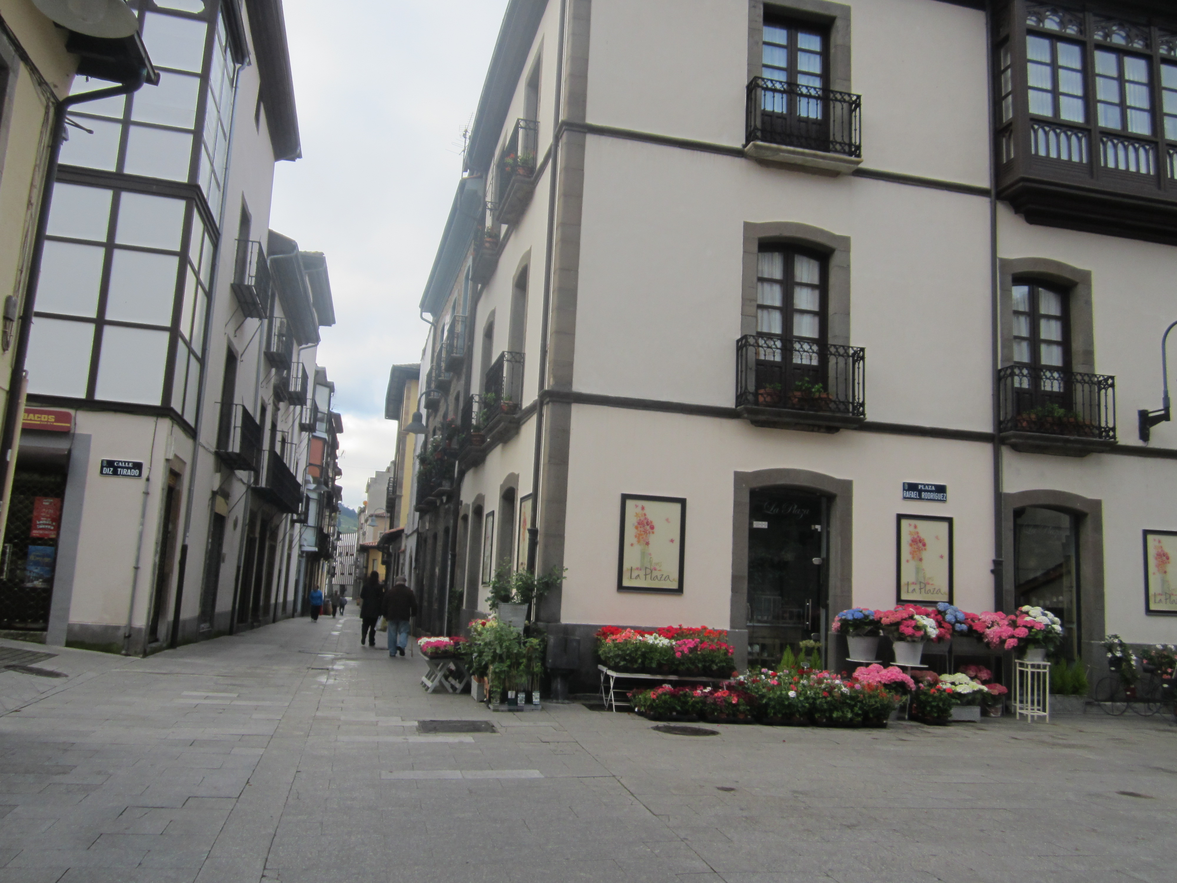 Floristería en Cangas del Narcea 985811511